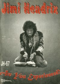 Jimi Hendrix. Are You Experienced?